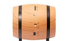 Altavoz Bluetooth Portátil 1503401 de STOGA karaoke con micrófono 5 W, en barriles