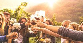 Los mejores accesorios para amantes del vino