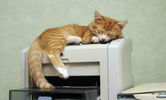 Las mejores impresoras láser a color