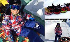 Los mejores trineos para la nieve